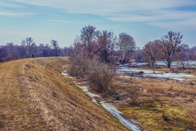 纳雷夫河河在波兰 免版税库存图片
