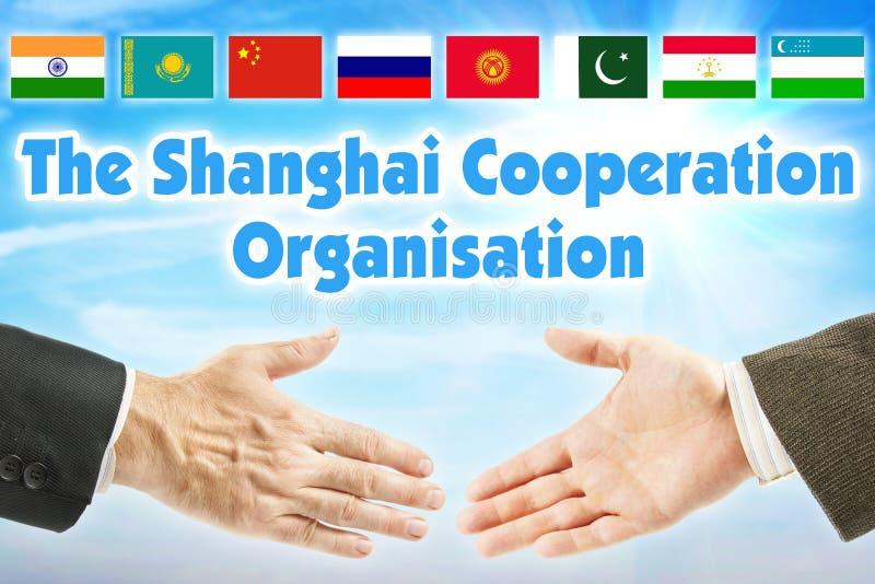 纳雷索夫,上海合作组织 亚洲的某些国家的联盟 免版税库存图片
