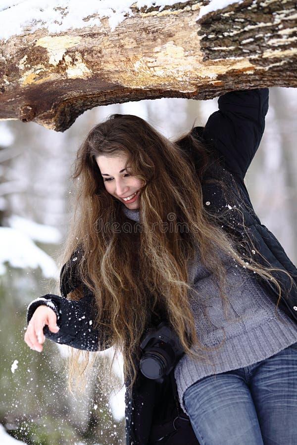 纵向冬天 免版税图库摄影
