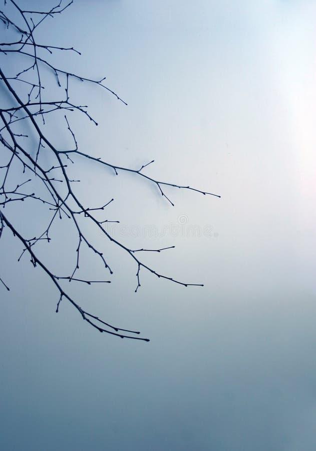 纸冬天 库存照片