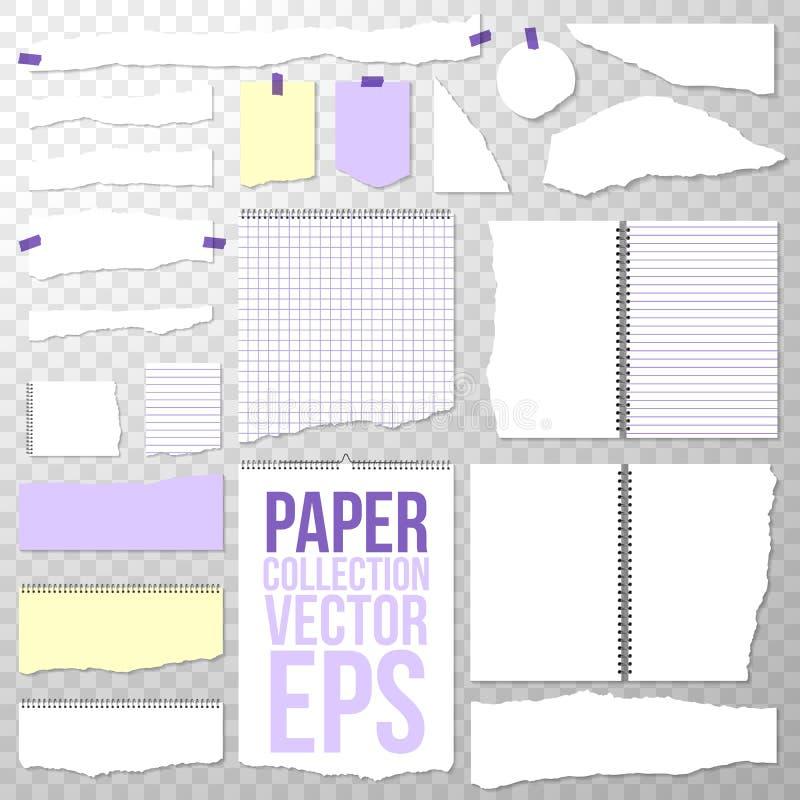 纸收藏 另外被撕毁的片断形状和大小从螺旋装订的笔记本 在透明的干净或空白页 皇族释放例证