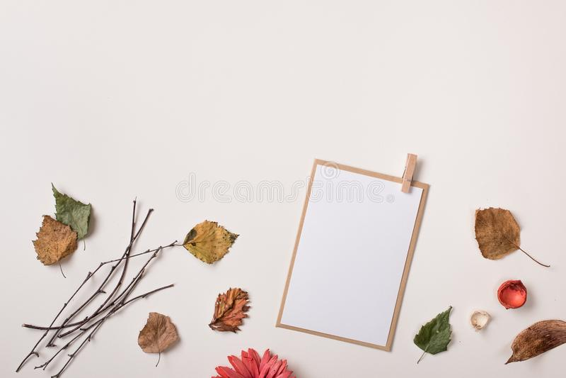 纸牌的嘲笑和秋天干燥秋叶 库存照片