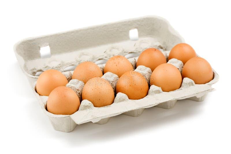 纸盒鸡蛋 免版税图库摄影