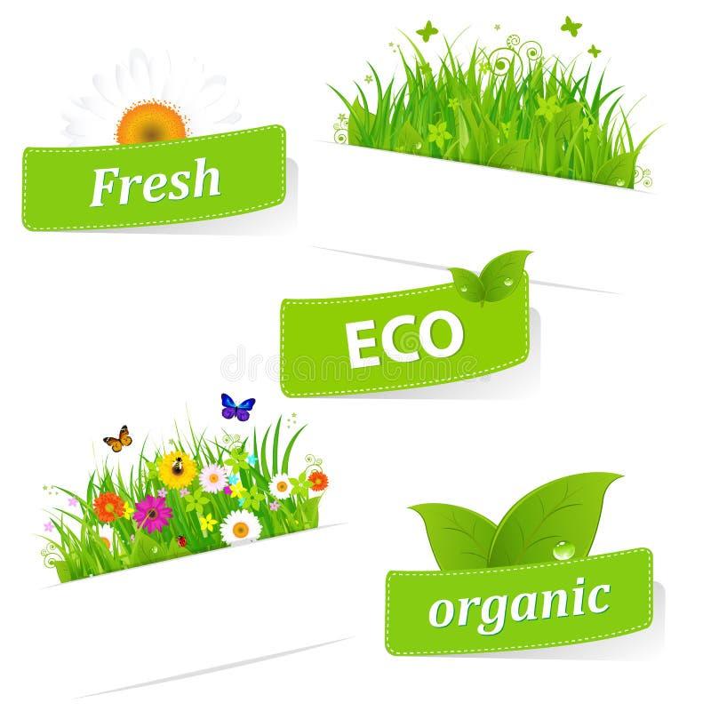 纸稠粘与绿草和花 向量例证