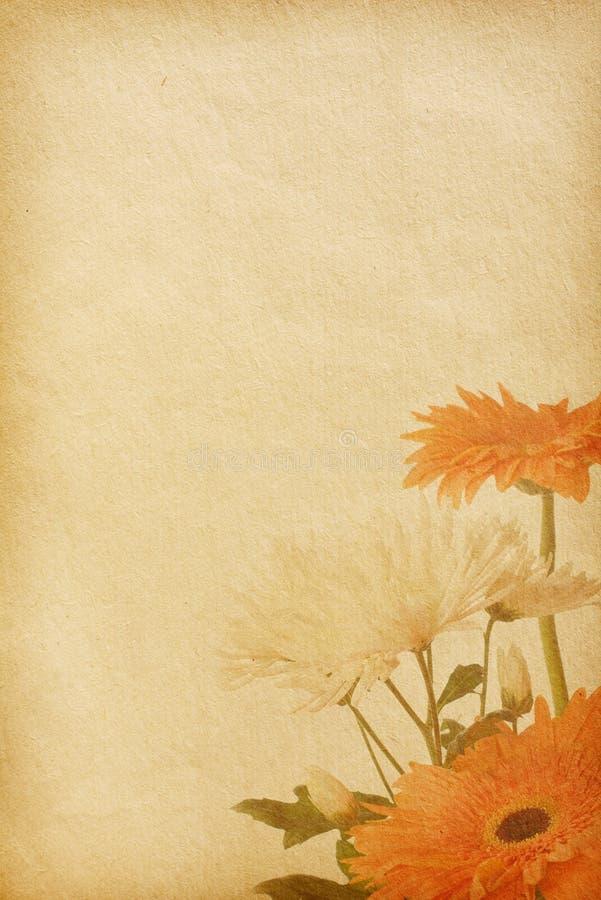 Download 纸纹理 库存照片. 图片 包括有 背包, brander, 菊花, 镇痛药, 题头, 装饰, 关闭, gerber - 15679698
