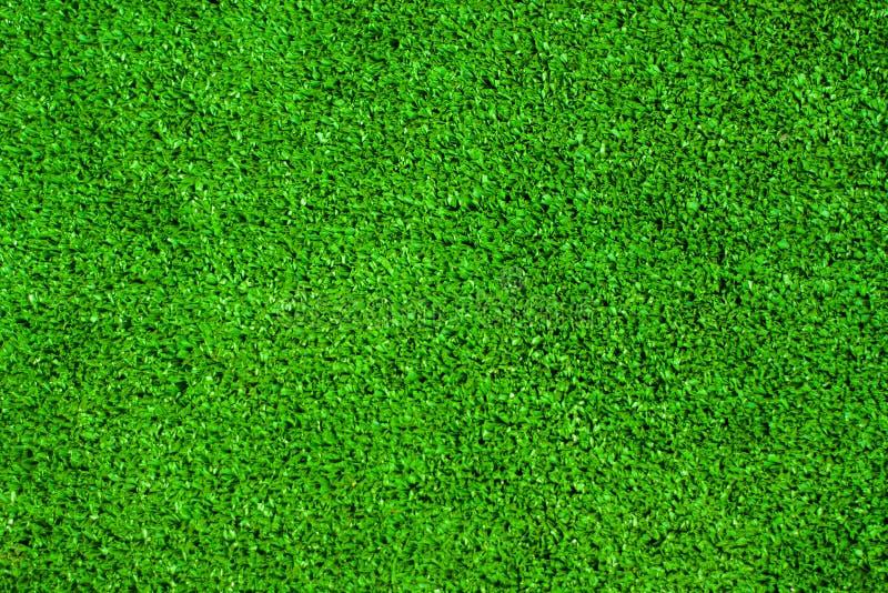 纸莎草摘要背景绿色叶子  免版税库存照片