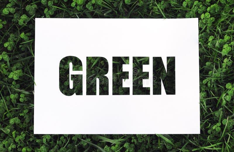 """纸钢板蜡纸""""green† 图库摄影"""