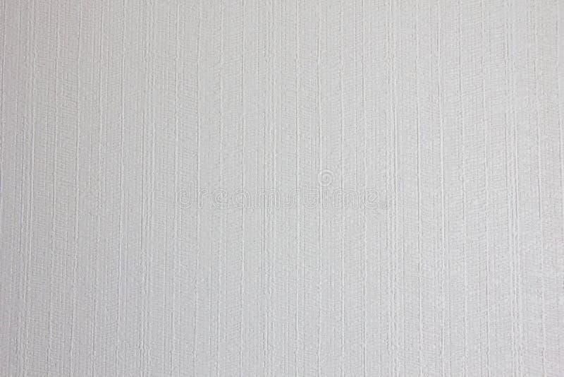 纹理墙纸白色 免版税库存照片