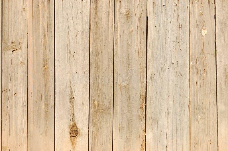 纹理木头 皇族释放例证