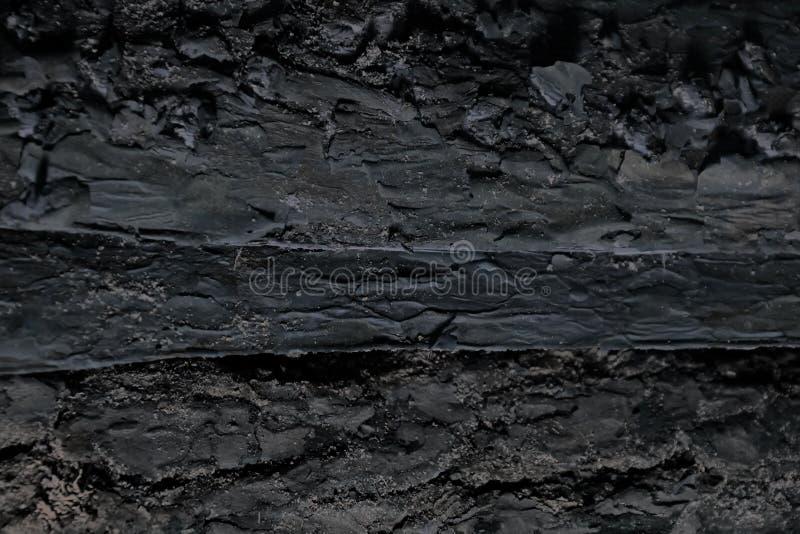 纹理杉木吠声背景 老木板,背景 肮脏木 地板表面 细节木纹理吠声 变老的吠声 免版税图库摄影