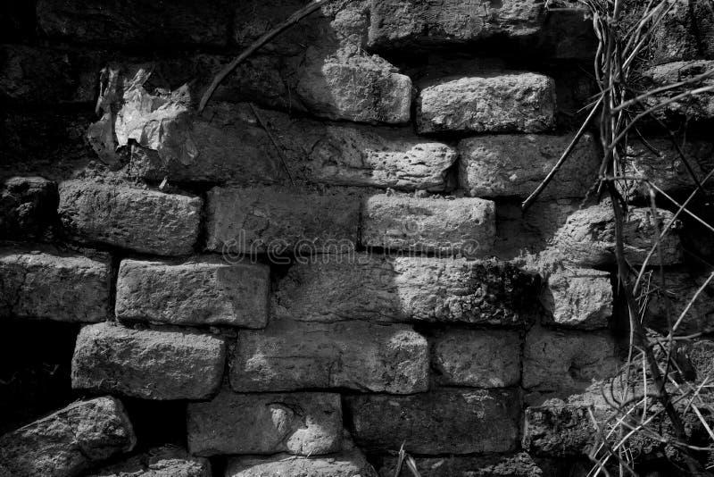 纹理的黑白老砖墙 免版税库存图片