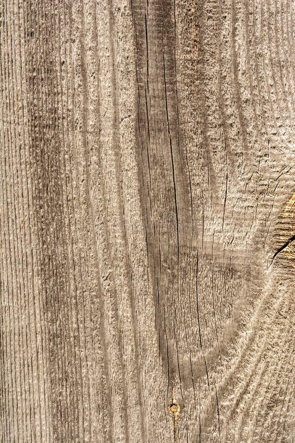 纹理老烘干被风化的破裂的木头,沿日志,特写镜头抽象背景纤维的镇压  免版税库存照片