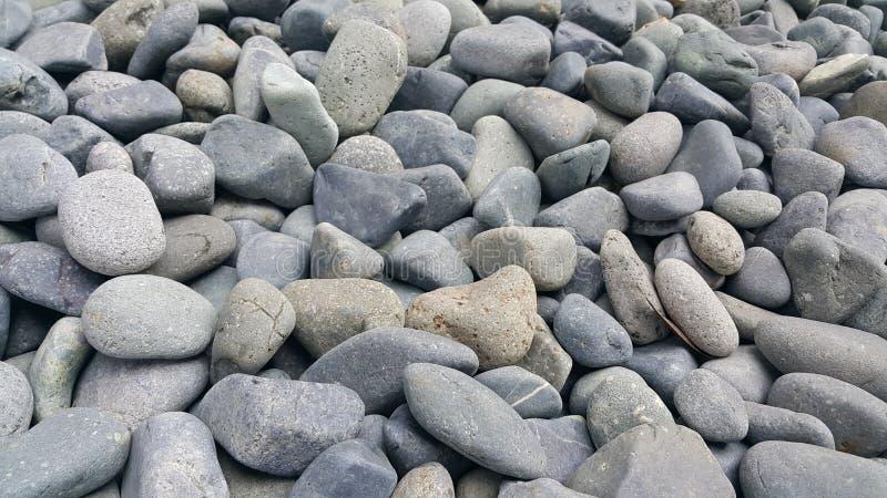 纹理背景:岩石小卵石,小,被环绕的,光滑的小卵石 库存图片