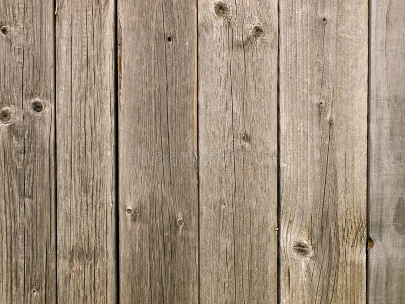 纹理被风化的木头 库存图片