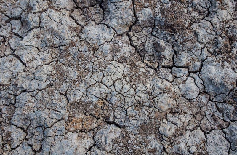 纹理破裂的地球 图库摄影