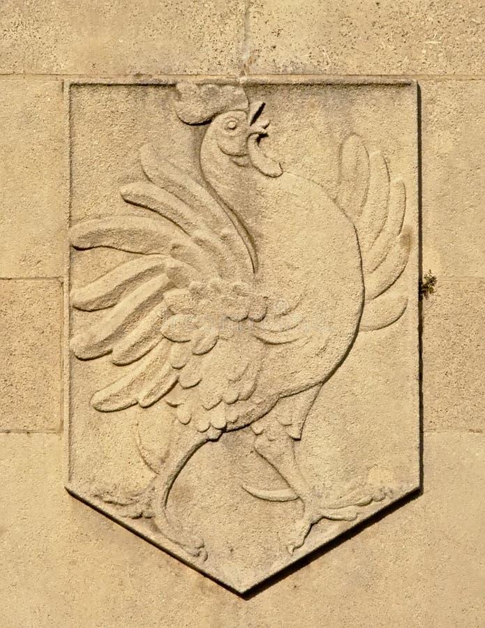 纹章学五倍子的雄鸡,法国国家的symbl,装饰在石头 免版税图库摄影