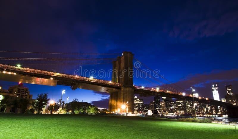 纽约地平线和自由雕象在晚上, NY,美国 库存照片