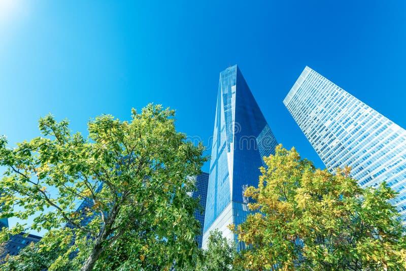 纽约大厦在树的在反对蓝色的叶子季节 免版税库存图片