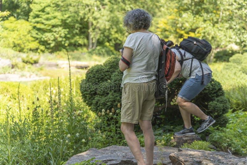 纽约,美国- 2018年6月26日:成人拍与dslr照相机的一张照片在公园 图库摄影
