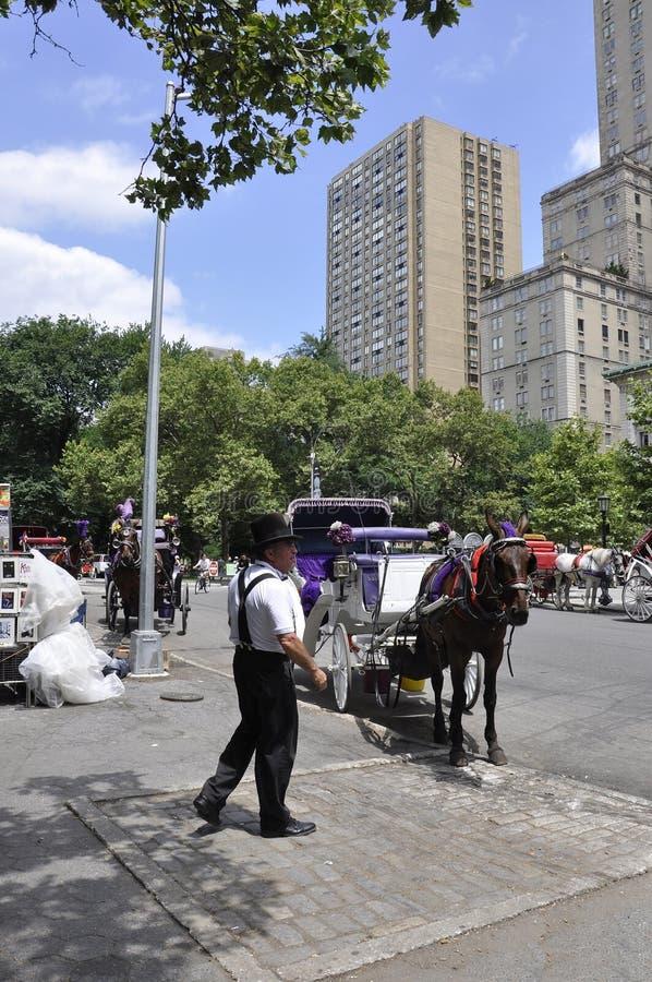 纽约, 7月1日:在中央公园的马支架在从纽约的曼哈顿中城在美国 免版税图库摄影