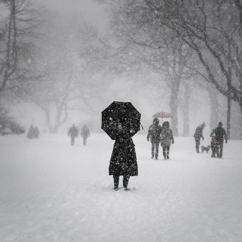 纽约, 1/23/16 :在冬天风暴乔纳斯期间,中央公园在大雪盖了 免版税库存照片