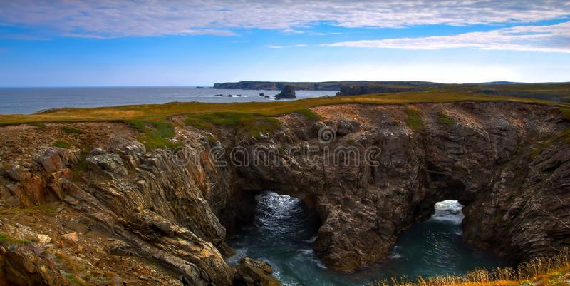 纽芬兰海岸全景 免版税库存图片