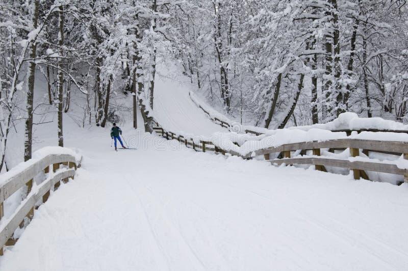 线路滑雪 库存图片
