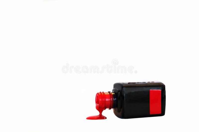 组成指甲油产品 指甲油的大选择 免版税图库摄影