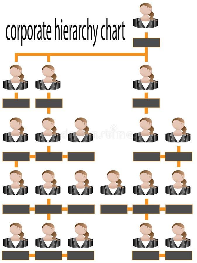 组织图表总公司的层次结构 皇族释放例证