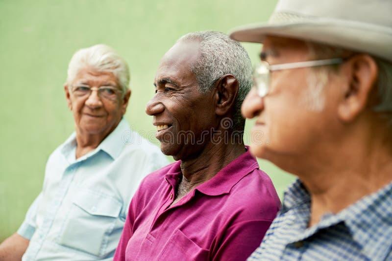 组老黑人和白种人人联系在公园 库存图片