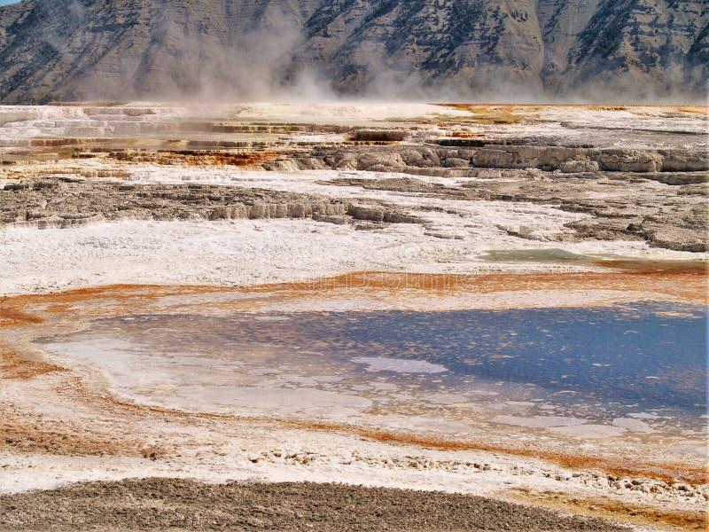 细刨花喷泉在黄石国家公园 免版税库存图片