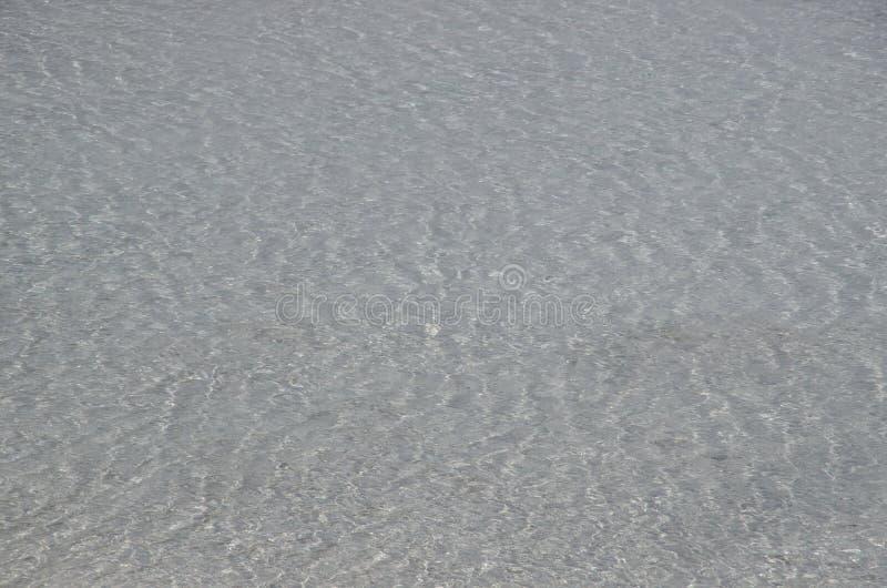 细刨花喷泉火山口黄石公园 库存照片
