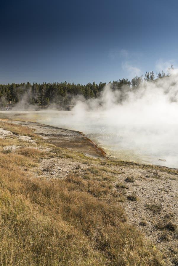 细刨花火山口盛大多彩春天在黄石国家公园 免版税库存照片