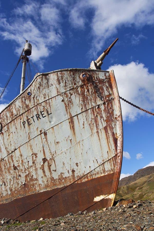 细节scheepswrak Grytviken Zuid乔治亚;细节shipswreck Gry 库存图片