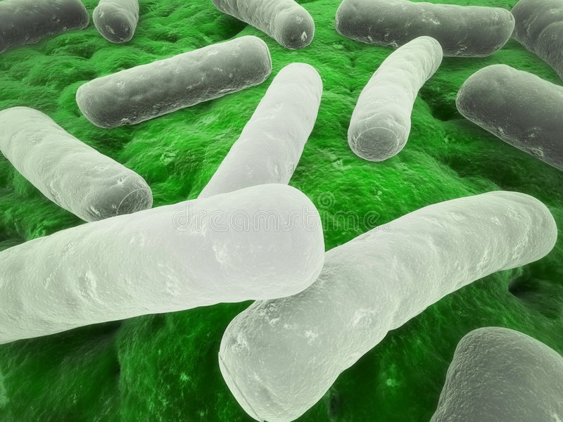 细菌少校 库存例证