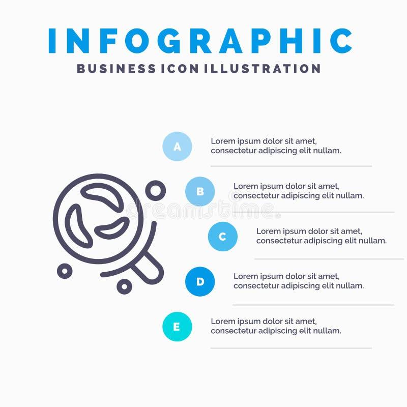 细菌,实验室,研究,科学线象有5步介绍infographics背景 向量例证