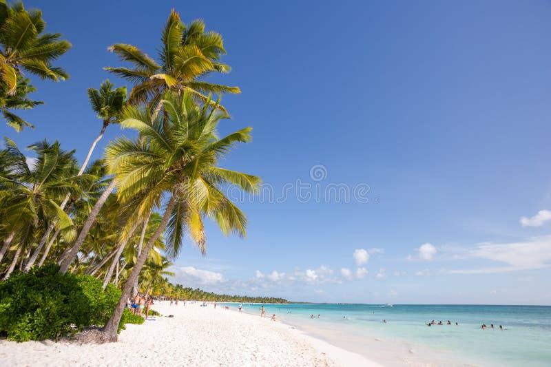 绍纳岛在蓬塔Cana,多米尼加共和国 免版税库存照片