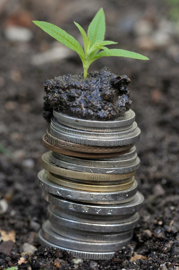经济增长概念 库存图片