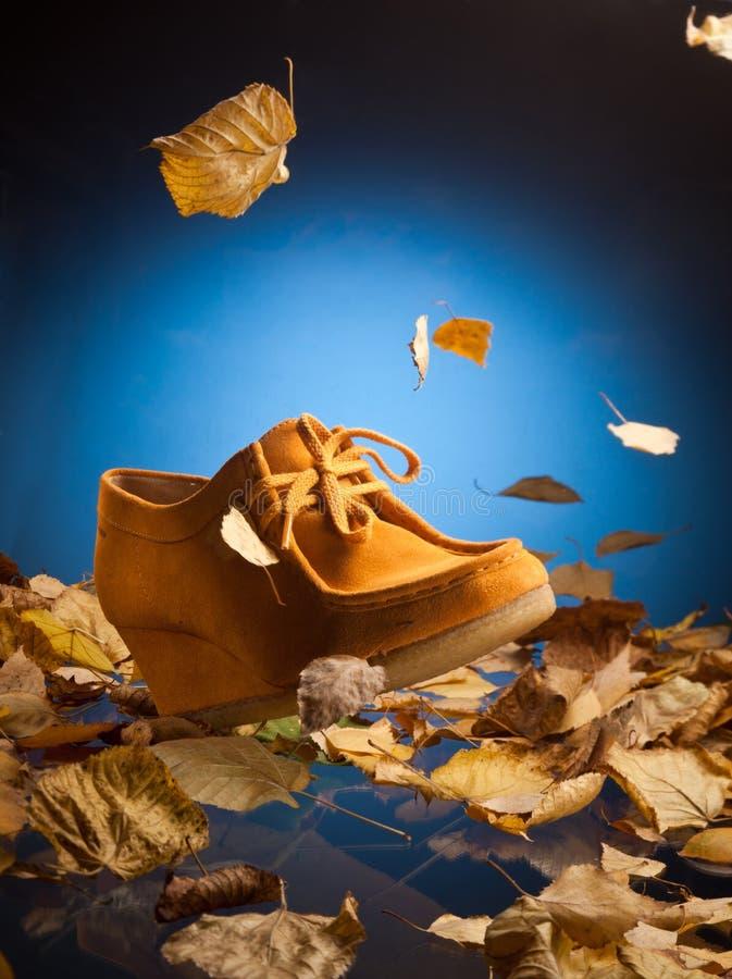 绒面革鞋子 免版税库存照片