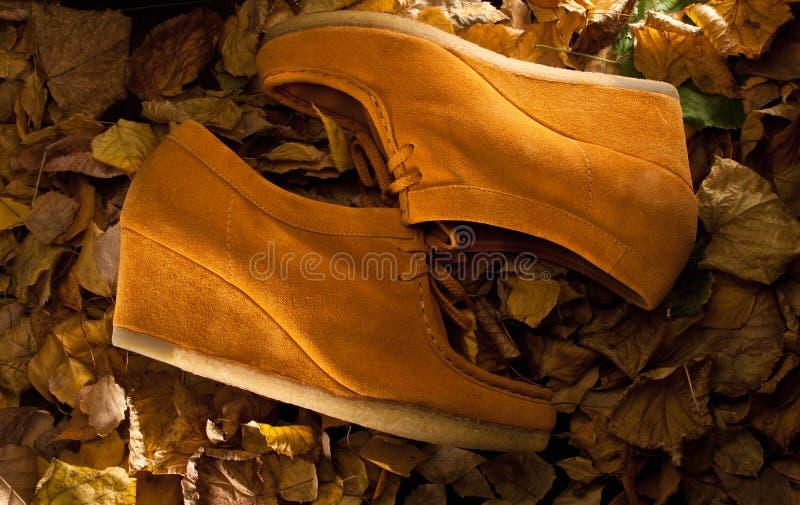 绒面革鞋子 库存图片