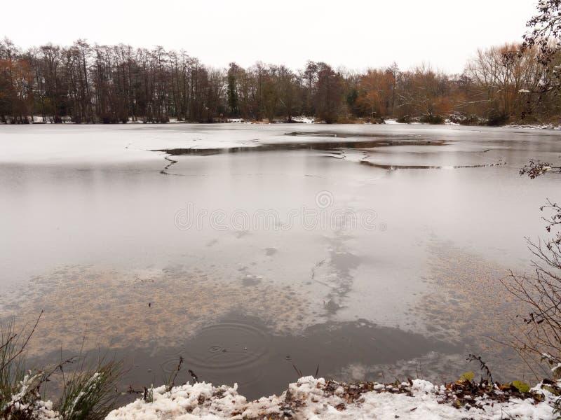 结冰在冬天湖水面树白色天空自然cra 免版税图库摄影