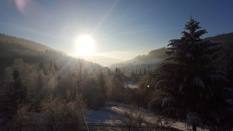 结冰早晨斯洛伐克 免版税库存照片