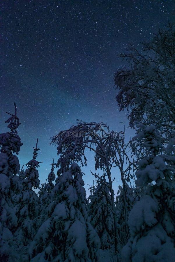 结冰的寒冷冬天夜风景 免版税库存图片