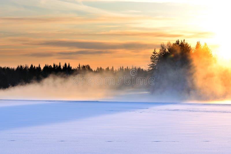 结冰的河在一个冷的冬日 免版税库存图片
