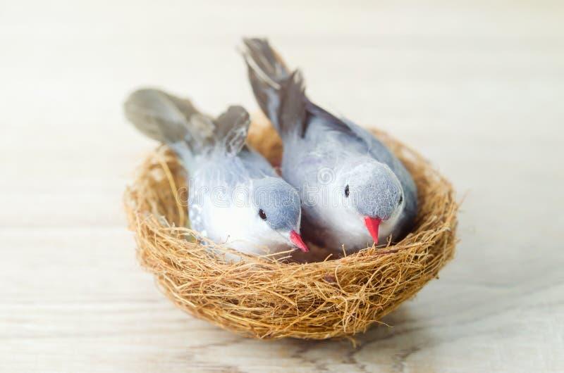 结合与巢的人为鸟在木背景 免版税库存照片