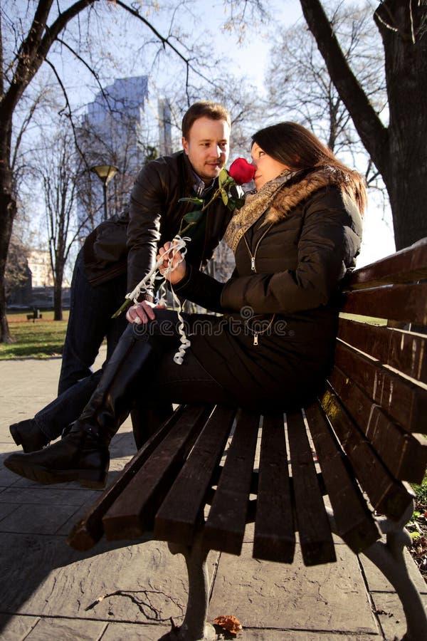 结合享用在公园和美丽的女孩一朵红色玫瑰 库存图片