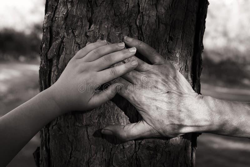 结合在一起使手的老妇人和孩子的图象通过在森林黑白摄影的步行 库存图片