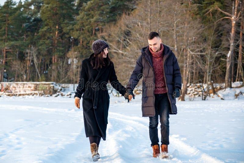 结合在握手和一起走在公园的爱在冬天 免版税库存照片