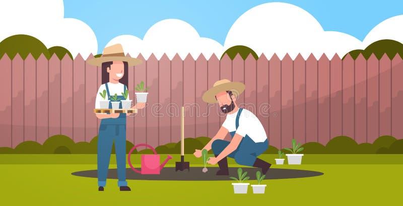 结合种植年轻幼木植物花和菜人妇女的农夫工作在种田概念的庭院eco 皇族释放例证