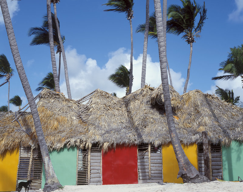 结构加勒比 库存图片